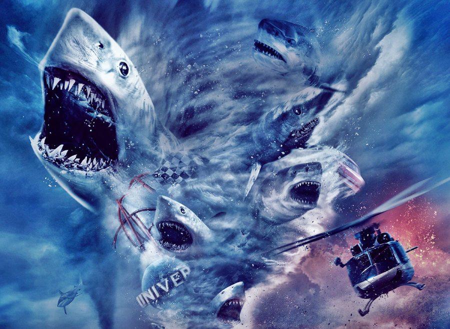коты кино про акул картинки новичок творческой